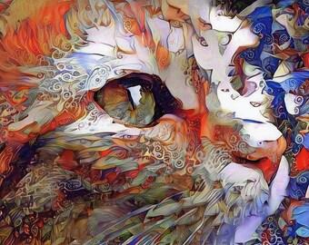 Cat Art, Cat Print, Orange Cat, Psychedelic Art, Colorful Decor, Cat Lover Gift, Cat Photo, Colorful Wall Art, Orange and Blue Art, Felines