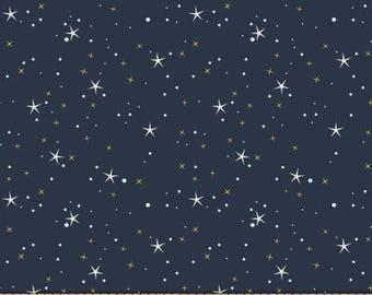 Believe Metallic Star Light NITE from Michael Miller Fabric's Believe Collection by Sandra Clemson