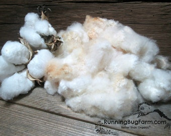 Raw Cotton Lint With Seeds Spinning Fiber Red Folliated White Brown Cotton Hand Picked Harvested Organic Cotton Non GMO Cotton Fiber Fill