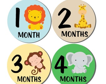12 month stickers- Monthly Stickers- Milestone Sticker- Baby Month Stickers- Baby Boy Month Stickers- Milestone Baby Month Stickers- B01