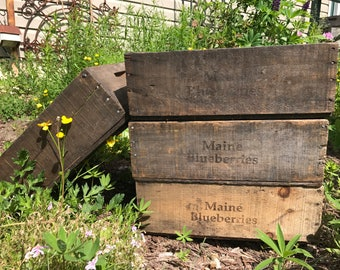 Antique Maine Blueberry Wooden Crate, Rustic Wooden Crate, Wooden Box, Vintage Fruit Harvest Box, Rustic Home Decor, Decorative Box, 1920s +