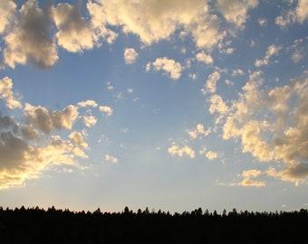 Gold Cloud Sunset Art Print, Nature Photography Blue Woodland Zen Rustic Wall Art Wall Decor