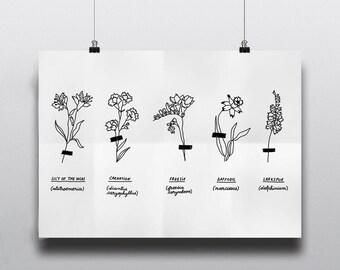Herbarium | Floral Art | Printable Poster | Digital Art | Wall Decor | Gallery Wall | Wall art