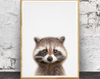 Racoon Print, Baby Animal Prints, Baby Decor, Baby Wall Art, Baby Room Decor, Animal Prints, Animal Art, Nursery Animal Print, Baby Animal