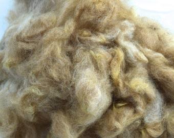 Alpaca Fiber, Washed (Traviosa)