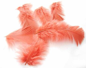 x 5 6-8 cm orange Turkey feathers.