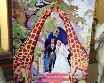 A Higher Love - Completely Beautiful Wedding Card Ideal for an Animal Lover Vintage Illustration Repro