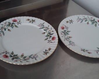 2 Vintage Bone China Royal Standard 'Bramble rose' Dinner Plates