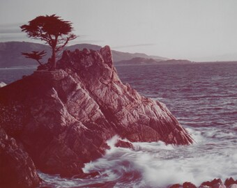 Gallery Wall Art Original Vintage Photography 1970s Mid Century Modern Carmel California Seascape