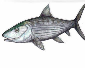 "8"" Bonefish Decal"