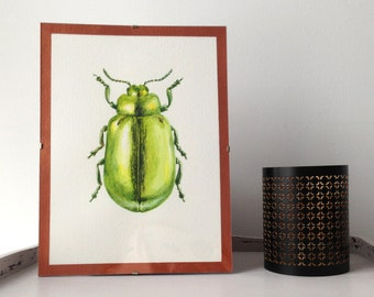 Green beetle painting