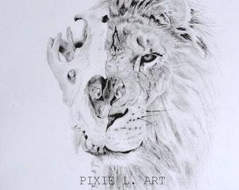 Lion Skele