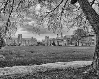 Washington University in St. Louis Art Print Photo - St Louis Photography - WashU WUSTL