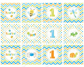 BOY BUGS cupcake toppers- YOU Print