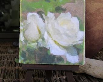 Giclee art print | white rose art | floral print art | botanical canvas | mini canvas art gardener gift | small canvas art | cottage decor