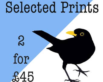 Two Screen Prints for Forty Five Pounds - Selected Screen Prints - offer - animal prints - bird prints - original print - wall art - magpie