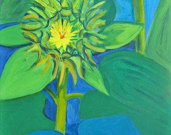 Budding Sunflowers