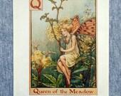 Queen of the Meadow Alpha...