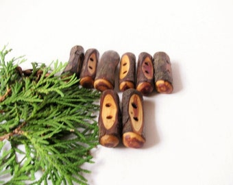 Eight juniper wood toggle buttons. Juniper tree branch buttons.