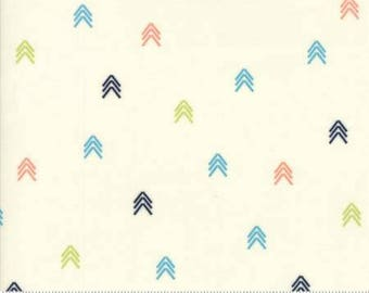 INSTOCK Creekside Compass Ivory 37536 11 by Sherri and Chelsi from Moda -1 yard