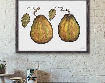 Botanical Fruit Print, Pears Illustration