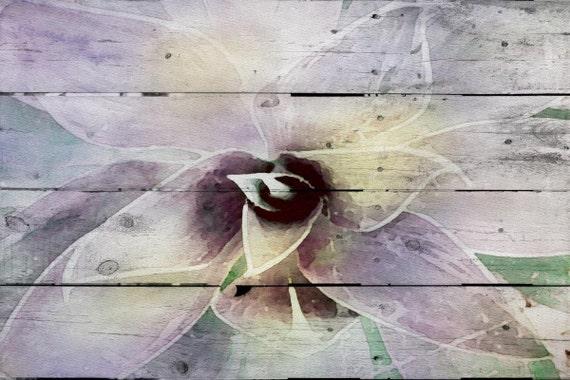 Succulent. Overlapping, purple. Canvas Print by Irena Orlov