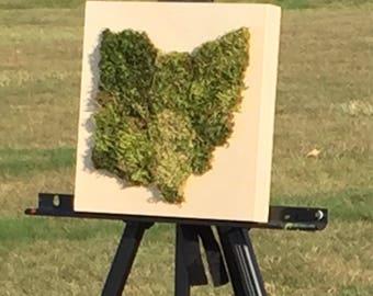 Moss Ohio Sculpture