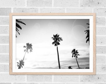 tropical decor black and white home palm tree print beach art print black and white photography decor coastal tropical wall art photography
