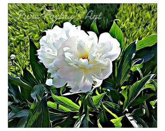 SALE Digital Download White Peony flowers - Digitally Enhanced Art Photo File of White Peonies
