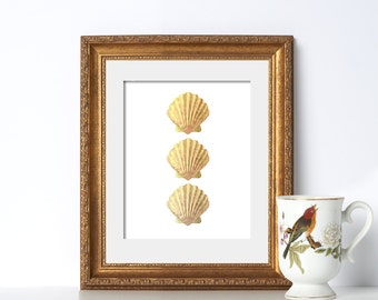 Scallop Print Summer Poster Sea Shell Print Beach Printable Vacation Home Decor Beach House Decor Poster Printable Beach Poster Wall Decor
