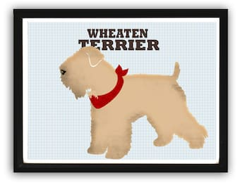 Wheaten Terrier Dog Art - Fine art print , wall decor