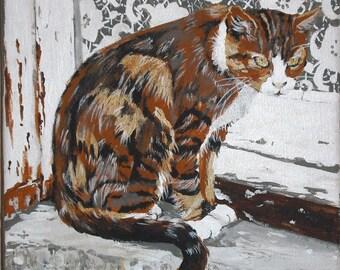 The tabby cat