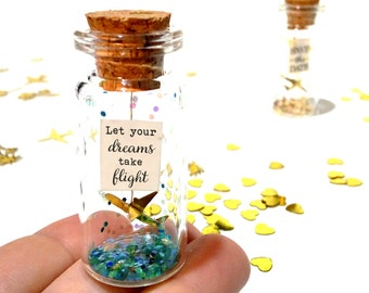 Let your dreams take flight. Motivational gift. Origami plane. Paper plane. Message in a bottle.