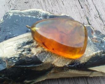 Baltic Amber Cognac Butterscotch Cabochon Pendant Large 8.4 gram 42 Ct (TCW)