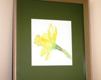 Daffodil flower original watercolour painting