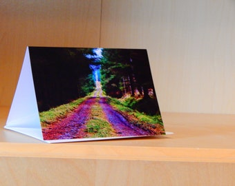 Greetings Card - Path through the Woods