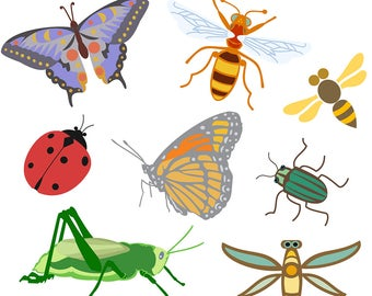 Bug Clipart, Bug Clip Art, Insect Clipart, Insect Clip Art, Insects, Bugs, Digital Download, Royalty Free