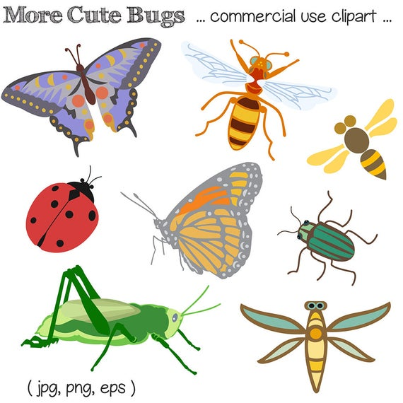 bug clipart bug clip art insect clipart insect clip art rh etsy com cricket insect clipart insect clipart free