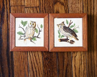 Set of Two Vintage Owl Trivets / Pictures