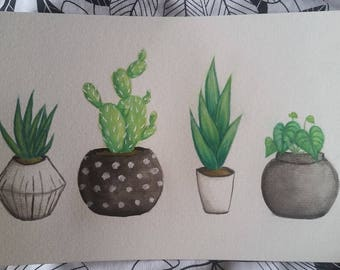 Contemporary black and white potted plants