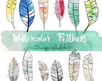 Watercolor Feathers - 12 Image Clip Art Set