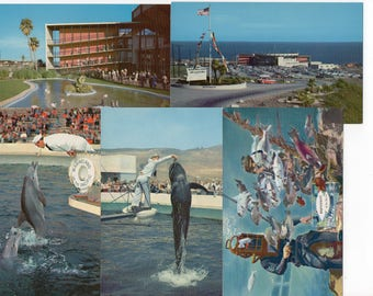 Lot of 8 Vintage Marineland of the Pacific Souvenir Postcards Dolphins Fish Theme Park