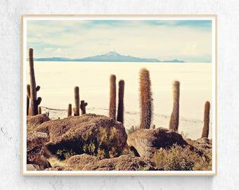 Desert Cactus Photo Print, Boho Mountain Salt Wall Art, Large Poster, Contemporary Photography Modern Minimalist, Printable Digital Download