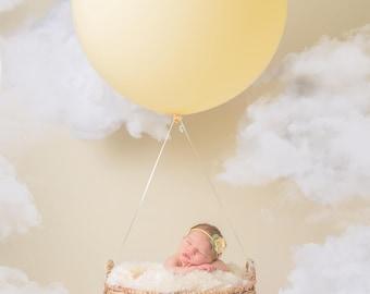 Dream Baby  Newborn Digital Backdrop