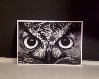 Owl Charcoal Drawing giclee print of my original drawing 12x8 detailed owl eyes fine art print home decor wall decor for owl lovers sdpteam