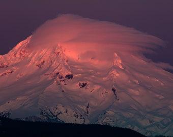 Pink Mount Hood