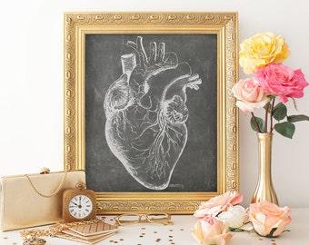 Cardiology Office Art, Anatomical Heart Print, Heart Chalkboard Print, Chalkboard Heart Poster, Cardiologist Cardiac Clinic Art, DigitalFile