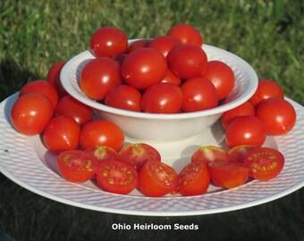 Organic Riesentraube Heirloom Tomato Seeds- 40+ Seeds