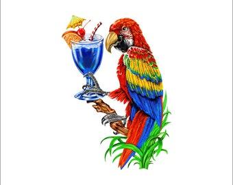 5 O'clock somewhere decal, full color parrot decal, drinking parrot sticker, parrot laptop sticker, vinyl decal, vinyl sticker