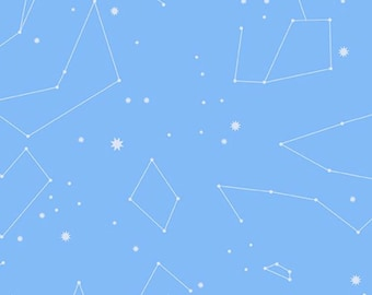 Constellations in Metallic Silver and Blue From Natural History by Lizzy House